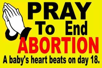 Pro-Life/Abortion | Embrace Life 911